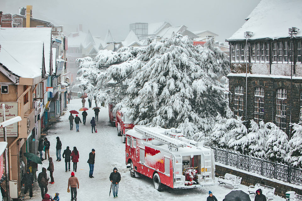 Shimla Volvo Tour Package4Day Holiday Tours Package @Rs 7 ...